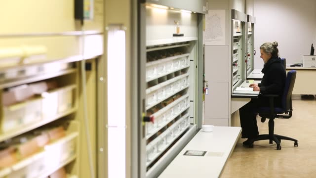 a worker checks documents in a card catalogue at the federal archive of the stasi the former east german secret police on january 13 2017 in berlin... - east germany stock videos and b-roll footage