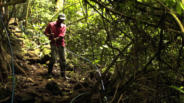 vídeos y material grabado en eventos de stock de a worker fixes an ecofriendly tourist trail on private property as the costa rican electricity institute has managed to produce all of the... - turismo ecológico