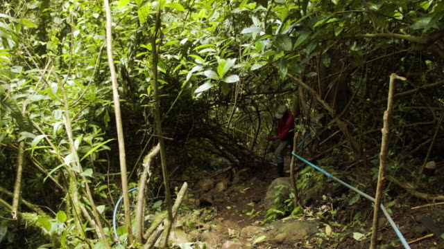 a worker fixes an ecofriendly tourist trail on private property as the costa rican electricity institute has managed to produce all of the... - ökotourismus stock-videos und b-roll-filmmaterial
