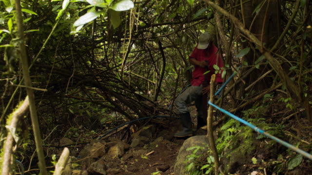 vídeos de stock e filmes b-roll de a worker fixes an ecofriendly tourist trail on private property as the costa rican electricity institute has managed to produce all of the... - costa rica