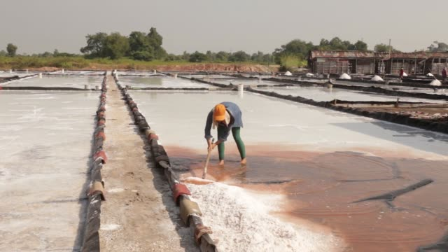 worker harvests salt from an evaporation pond at the khok saath iodized salt factory on the outskirts of vientiane, laos, on oct. 31, 2017. - evaporation stock videos & royalty-free footage