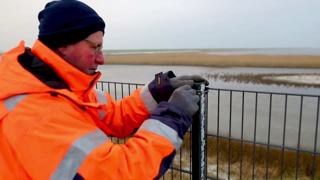 a worker installs a portion of a fence along the danish border to germany that is meant to stop wild boar from entering denmark on january 31 2019... - fence stock videos & royalty-free footage