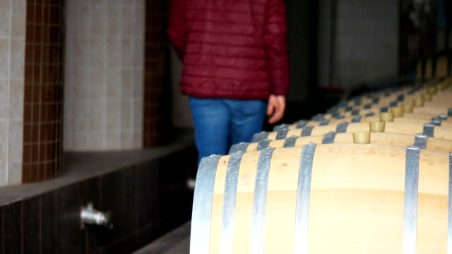 worker is checking wine barrels in wine factory - wine cellar stock videos and b-roll footage