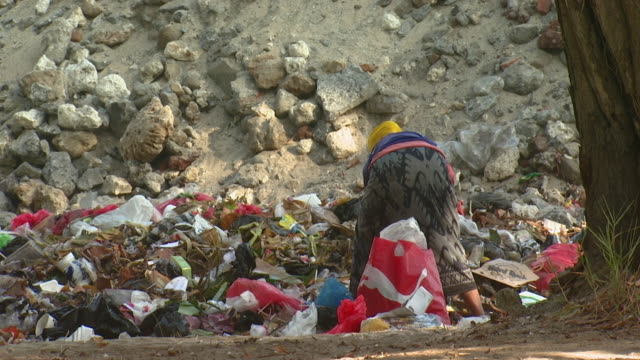 WS  Worker looking through rubbish dump / Bali, Indonesia