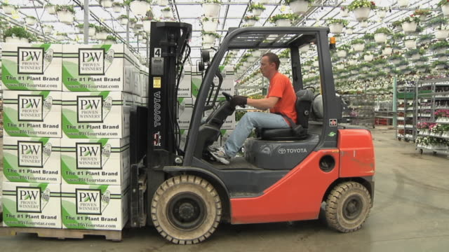 slo mo ms pan worker on forklift loading stack of cardboard boxes into loading dock at commercial greenhouse, carleton, michigan, usa - gewächshäuser stock-videos und b-roll-filmmaterial