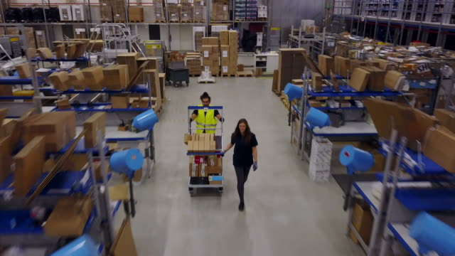 worker pushing trolley with coworker in warehouse - mezzo di trasporto video stock e b–roll