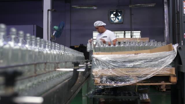 worker putting empty bottles on conveyor belt at destileria limtuaco factory manila national capital region philippines on tuesday july 16 2019 - capital region stock videos & royalty-free footage