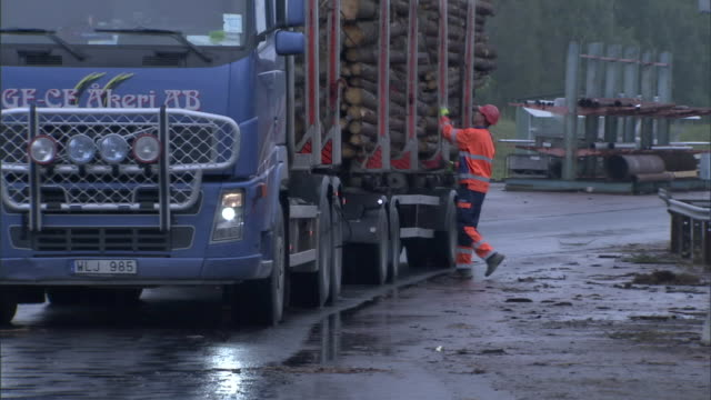 vidéos et rushes de a worker removes chains from the logs carried by a semi-truck at a paper mill. - semi remorque