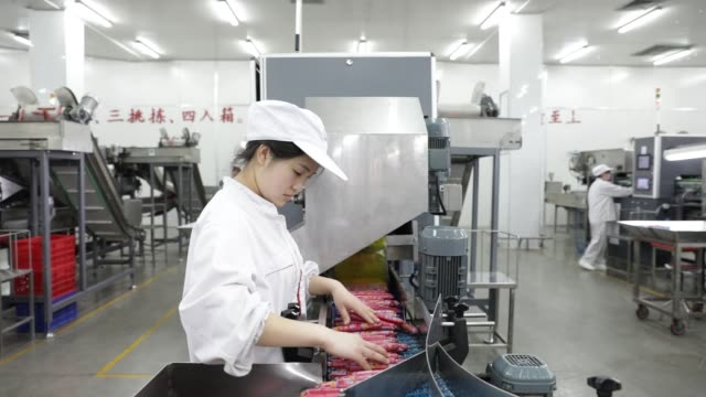 a worker sorts packaged sausages on a production line that manufactures shuanghui branded sausages at a wh group ltd facility in zhengzhou china on... - 河南省点の映像素材/bロール
