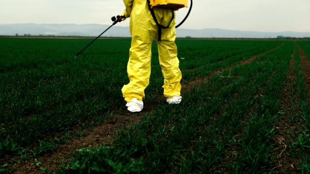 worker spraying toxic pesticides - herbicide stock videos & royalty-free footage