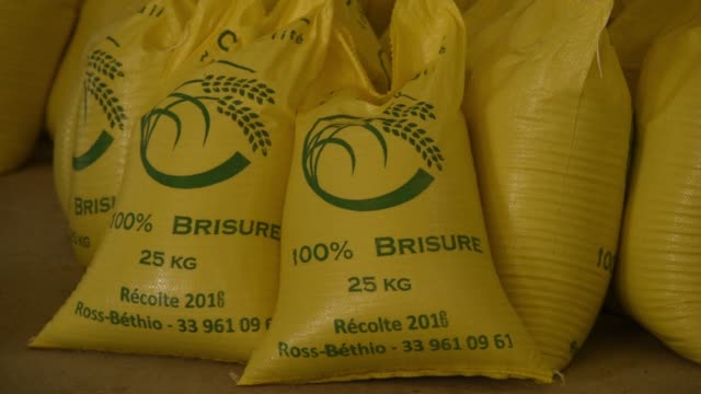 a worker stacks sacks of processed rice at a compagnie agricole de saintlouis du senegal warehouse in saintlouis senegal on tuesday nov 22 machines... - saint louis bildbanksvideor och videomaterial från bakom kulisserna