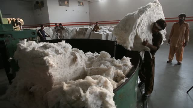 vidéos et rushes de worker unpackages and moves a bale of processed cotton at a j.k. spinning mills ltd. factory, operated by of j.k. group, in khurrianwala, punjab,... - plante cultivée