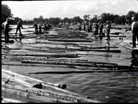 B/W PAN Worker using water for moving Timber for cutting, Ottawa, Canada / AUDIO