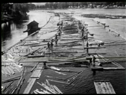 vidéos et rushes de b/w pan worker using water for moving timber for cutting, ottawa, canada / audio - bûcheron