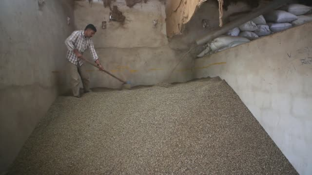 a worker walks past sacks of dryprocessed arabica coffee berries at a mill in murnad karnataka india on tuesday dec 3 dryprocessed arabica coffee... - bean bag stock videos & royalty-free footage