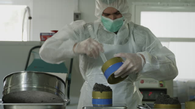 MS worker wearing protective clothing filling caviar into tins in production facility, RED R3D 4K,4KMSTR