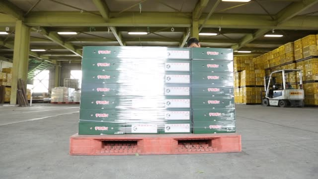 a worker wraps cellophane around boxes of dekopons a japanese citrus fruit stacked on a pallet before shipment in the warehouse of an agricultural... - cellophane stock videos & royalty-free footage