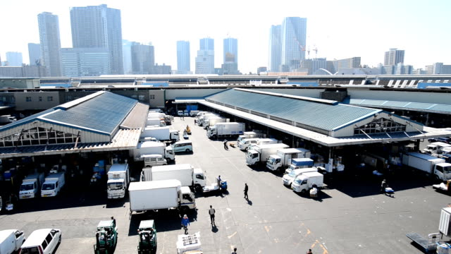 workers and cars at the morning in tsukiji fish market in tokyo - warehouse stock videos & royalty-free footage