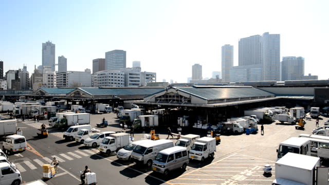 Workers and cars at the morning in Tsukiji Fish Market in Tokyo