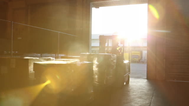stockvideo's en b-roll-footage met workers and machinery in a large food distribution warehouse - heftruck
