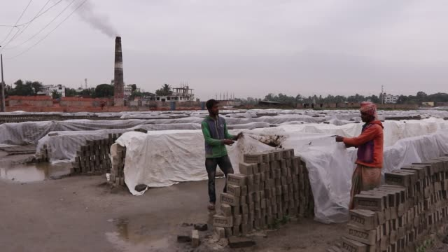 workers are trying to save bricks from rainy weather by covering polythene in brick field in savar, dhaka - dhaka stock videos & royalty-free footage