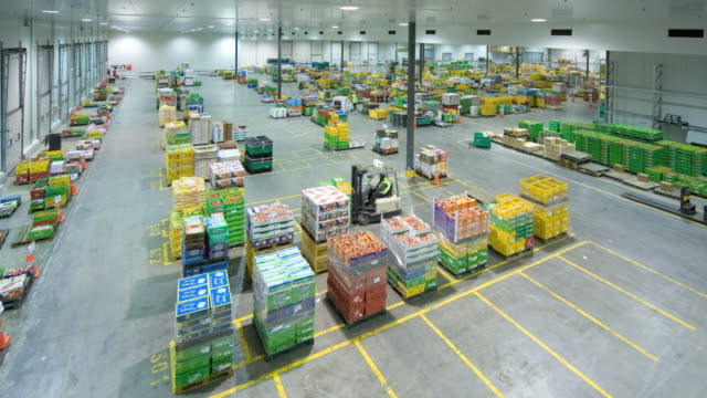 vídeos de stock, filmes e b-roll de ws t/l workers arranging containers in distribution warehouse using forklift / auckland, new zealand. - indústria de comida e bebida