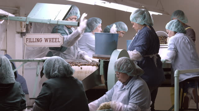 vidéos et rushes de ws of workers at old olive processing plant where olives roll on vintage conveyor belt for canning  / ontario, california, usa - charlotte médicale ou sanitaire