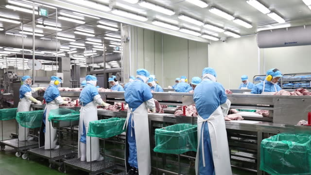 workers at production line in cj cheiljedang factory jincheon chungcheongbukdo south korea on tuesday june 25 2019 - meat chop stock videos and b-roll footage