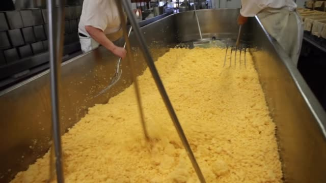 workers break up clumps of curds while making a vat of colby cheese at the widmer's cheese cellars on june 27 2016 in theresa wisconsin record dairy... - cheese stock videos & royalty-free footage