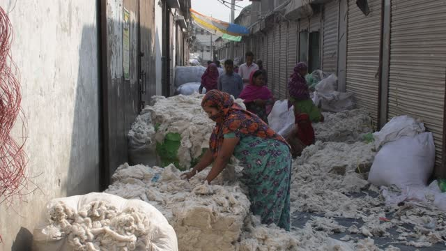 workers checking and sorting raw wool at a godown in dhaka, bangladesh on march 15, 2021. - silk stock videos & royalty-free footage