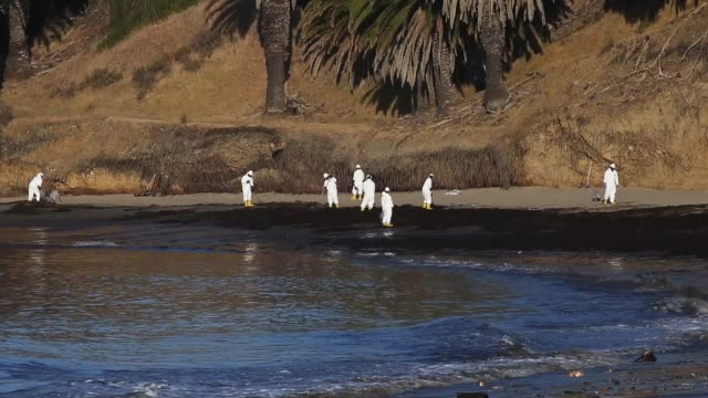 vídeos de stock e filmes b-roll de workers clean oil from an oil spill into the waters of the pacific ocean at refugio state beach on may 23 2015 in goleta california california gov... - derrame de petróleo