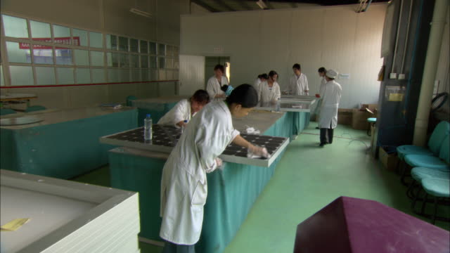 WS Workers cleaning solar panels, Dezhou, Shandong, China