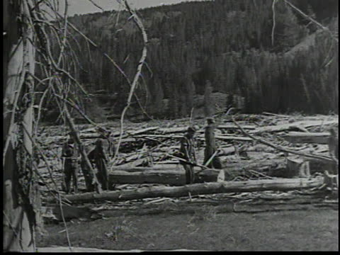 workers cutting down trees with axes / lumberjacks carrying logs / worker driving small bulldozer / workers clearing brush / workers stacking rocks - 1934 bildbanksvideor och videomaterial från bakom kulisserna