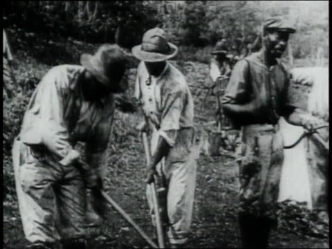 montage workers digging and using sprays along the panama canal trying to eradicate mosquito breeding grounds narration appears on the screen/... - anno 1906 video stock e b–roll