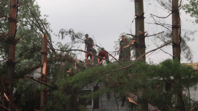 Workers getting downed trees off a house after an EF1 tornado with 130 mph winds made an 822 mile path Saturday June 15 2019 near Ellettsville Ind...