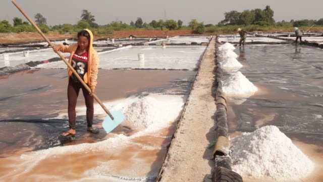workers harvest salt from an evaporation pond at the khok saath iodized salt factory on the outskirts of vientiane, laos, on oct. 31 a worker... - evaporation stock videos & royalty-free footage