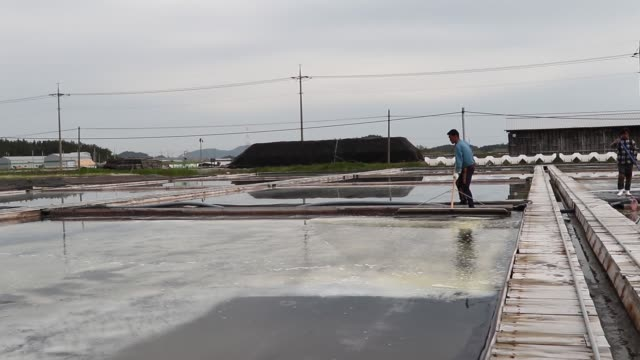 workers harvest salt from an evaporation ponds - evaporation stock videos & royalty-free footage