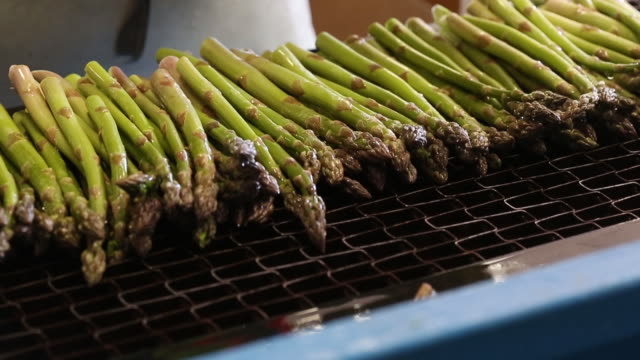 workers harvest, wash, trim and package fresh asparagus at connery's riverdale farms in southport, manitoba, canada on thursday, june 6, 2019. - asparagus stock videos & royalty-free footage