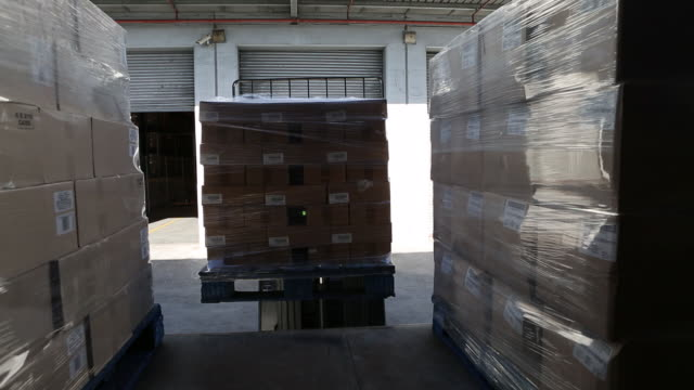workers in a large food distribution warehouse - entladen stock-videos und b-roll-filmmaterial