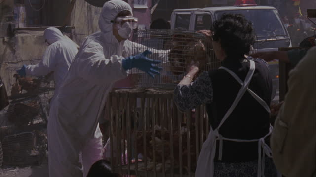 workers in protective clothing remove cages from asian street merchants. - virus dell'influenza aviaria video stock e b–roll