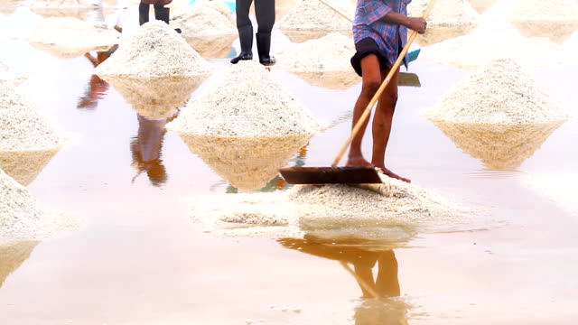 workers in salt farm - salt mineral stock videos & royalty-free footage