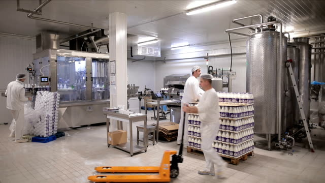 workers in the dairy - milk bottle stock videos & royalty-free footage