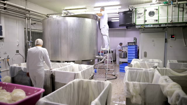 workers in the dairy - milk box stock videos & royalty-free footage