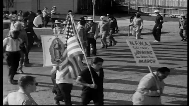 workers in the delano grape strike marching toward sacramento / california migrant farm workers struggled to better their conditions by fighting for... - lavoratore emigrante video stock e b–roll