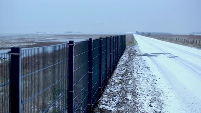 workers install a portion of a fence along the danish border to germany that is meant to stop wild boar from entering denmark on january 31 2019 near... - fence stock videos & royalty-free footage