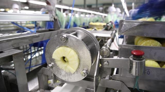 vidéos et rushes de workers load pineapples into a dicing machine at the samroiyod corp fruit processing facility in pranburi pranchuap khiri khan thailand on friday dec... - chaîne de production