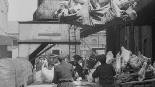 montage workers loading pieces of meat onto a moving conveyor belt / london, england, united kingdom - 1917 stock videos & royalty-free footage