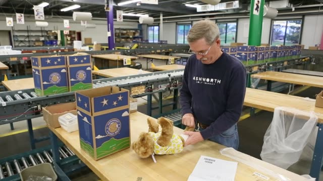 workers make teddy bears at the vermont teddy bear factory in shelburne, vermont, november 13, 2015 shots: an employee dresses a vermont teddy bear... - teddy bear stock videos & royalty-free footage