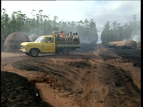 workers ride on back of truck through lines of smoking charcoal kilns in forest clearing tocantins state brazil - industria forestale video stock e b–roll