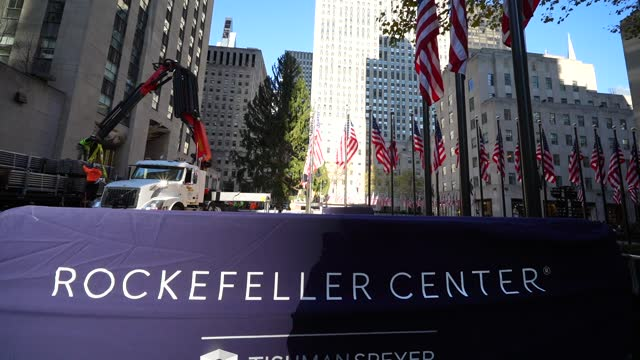 workers secure the 75-foot norway spruce which will serve as rockefeller center' christmas tree. the rockefeller center christmas tree arrives at... - rockefeller center christmas tree stock videos & royalty-free footage